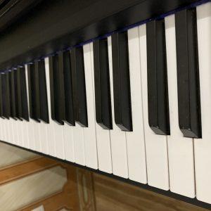dan-piano-dien-kawai-pw-170m