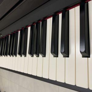 dan-piano-dien-roland-rp-301